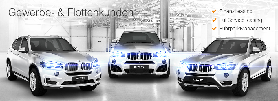 Finanzleasing Full Service Leasing Furhparkmanagement